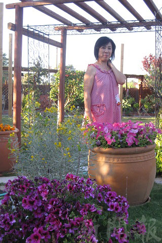 拉斯維加斯的春天庭院真美